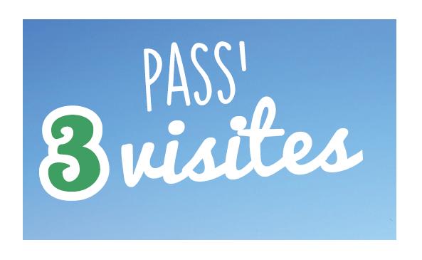 Pass 3 visites