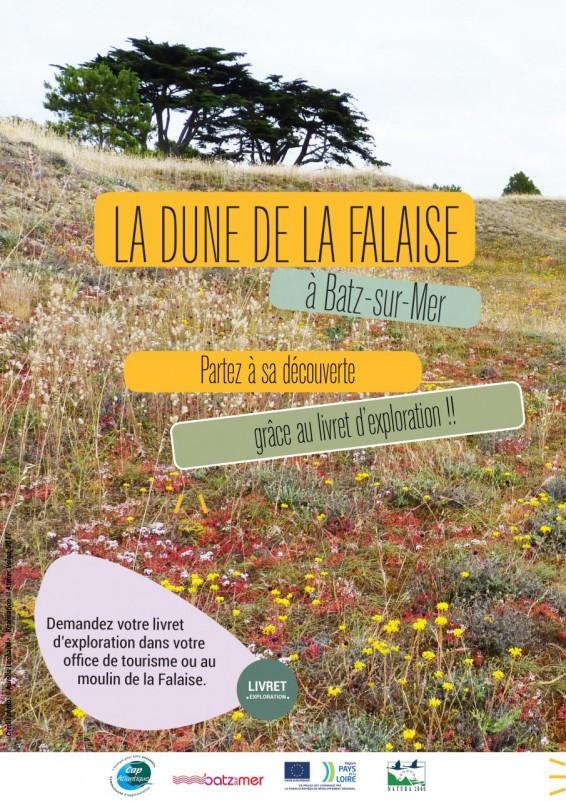 Die Dune de la Falaise