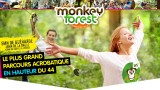 01-photo-monkey forest-couverture