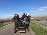 Carriage rides - K-Unique Batz Equestre