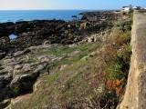 batz-sur-mer-du-casse-cailloux-a-plage-st-michel-7-1166288