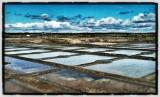Vue sur les marais salants à Batz-sur-Mer
