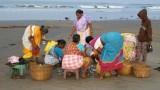 inde-2013-102-930674