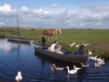 Jean-Sébastien  CRUSSON - Promenade en barque dans le marais de Brière - Au départ du port de la Chaussée Neuve