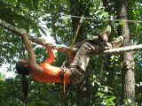 Monkey Forest - pour les amateurs de sensations fortes