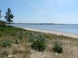 Palandrin beach