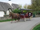 Promenade en calèche - Bréca - Saint Lyphard