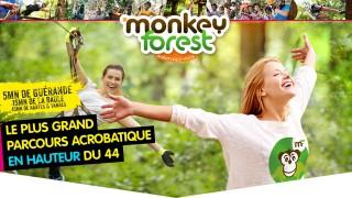 Monkey Forest Aventures & Loisirs - Saint-Molf