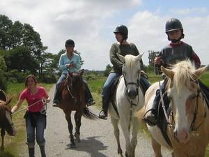 01 - Centre equestre de Brière Bretagne Plein Sud