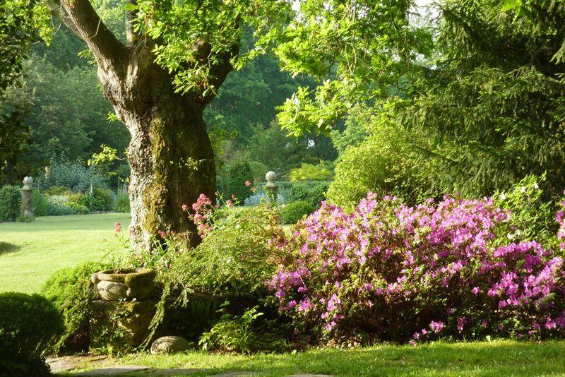 jardins-kermoureau-herbignac-fleurs-arbres-1540