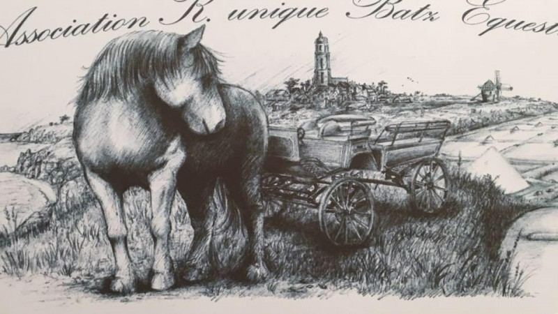 K Unique Batz Equestre