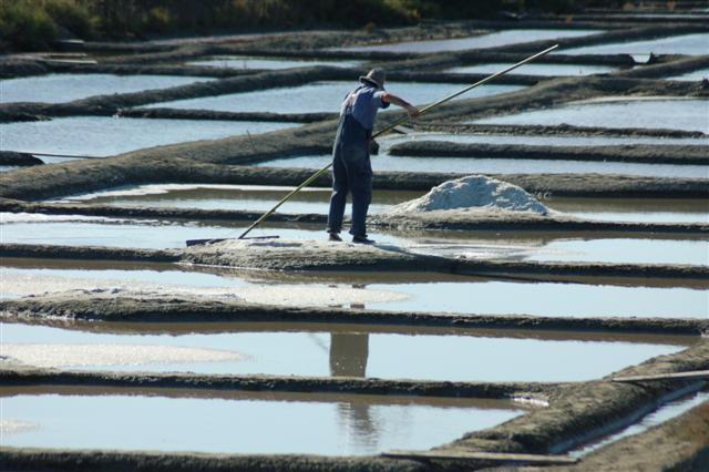 Le Paludier, Société Bourdic à Batz-sur-Mer, récolte du sel par le paludier