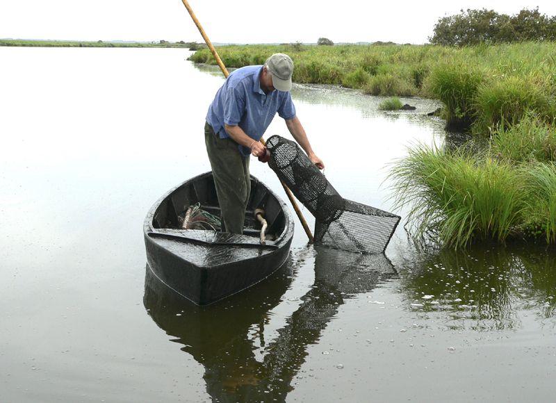 Pêche dans les marais de Brière