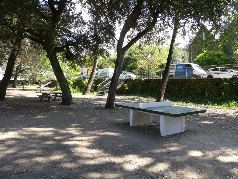 Tables de pique-nique et de ping-pong du petit-bois