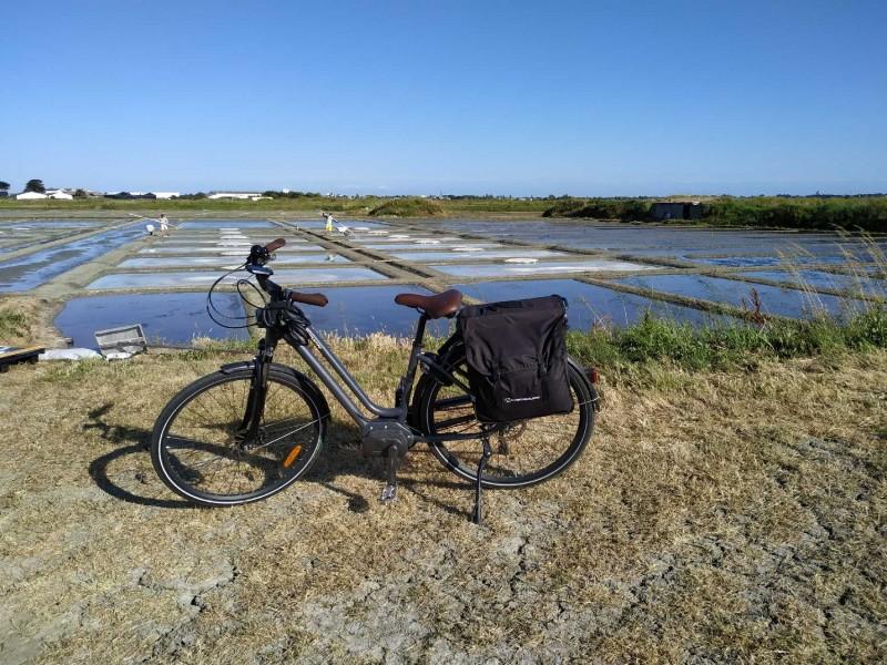 Radtour in die Salzgärten