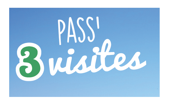 Pass 3 visits