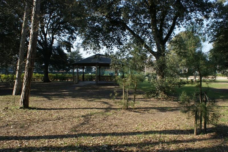 vide-grenier-parc-du-petit-bois-1812919